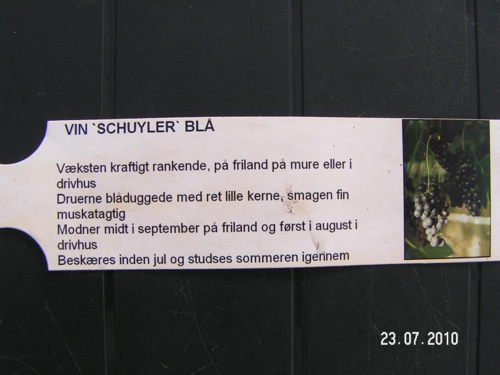 Schuyler plante info